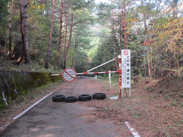 赤川ダムへ続く林道
