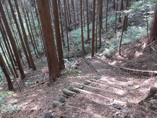 丸太を組んだ階段