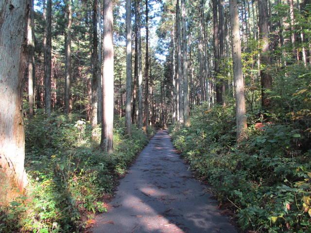 北コース入口への道