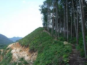 長倉山への展望のいい尾根