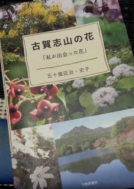 古賀志山で見る花たち・三角山~二枚岩ルート(2018年4月19日)
