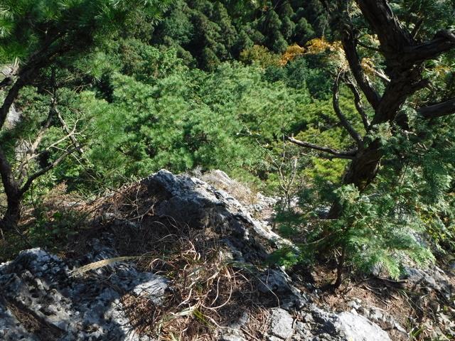 大日岩への登り
