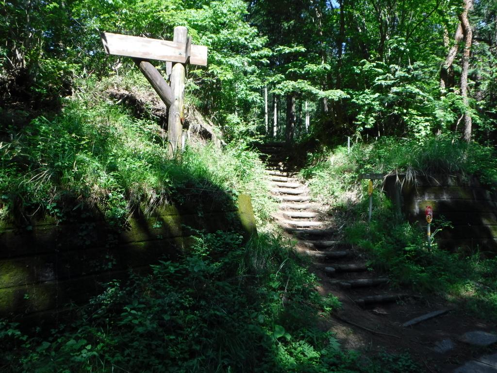 落とし物を探しに古賀志山へ。帰りは道を間違えてあの「小マラ岩」へ行ってしまった。