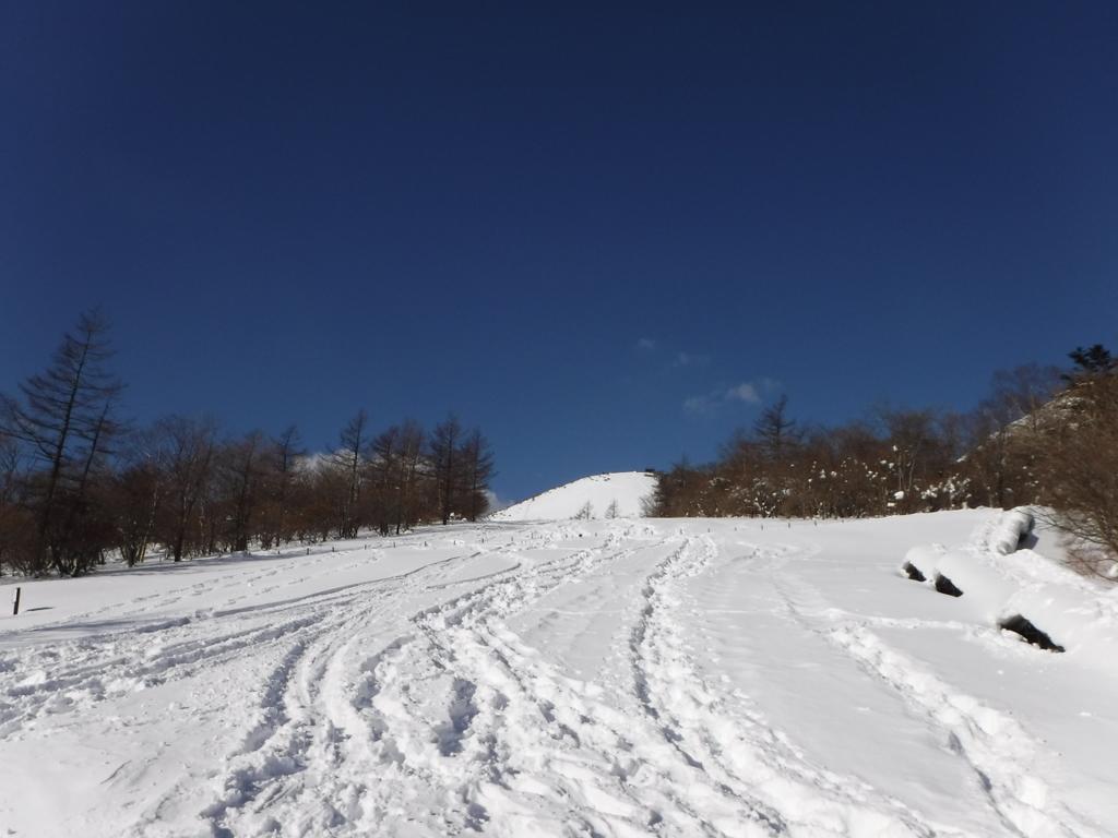 スノーシューツアー開幕早々から赤薙山登山で疲労困憊す。
