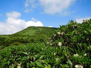那須から福島へぐるりとお花見のつもりが20キロ、10時間の激旅となった。