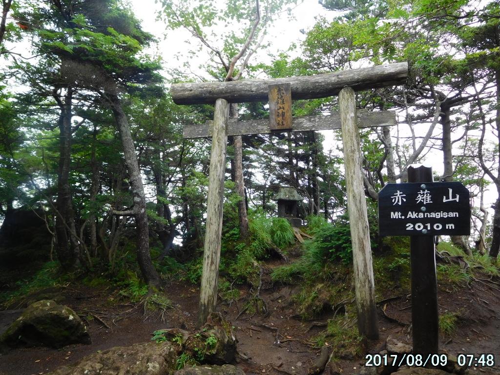 赤薙山に到着。歩き始めて1時間50分