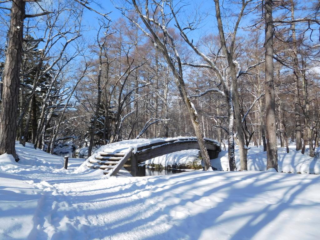 湯川にかかる木橋