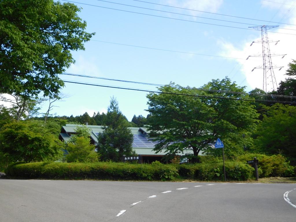 天気がいいので栃木県民の森を散策。ここは探索の面白さが味わえる。