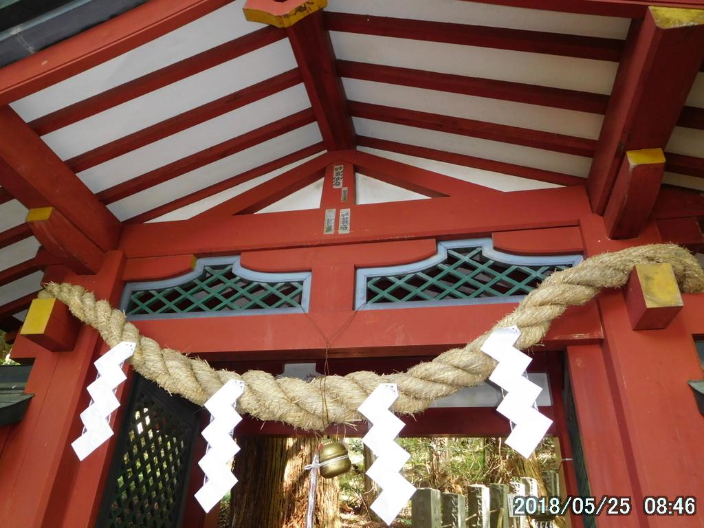 常連さんと行く男体山は厳しくもあったがシロヤシオの宝庫だった。