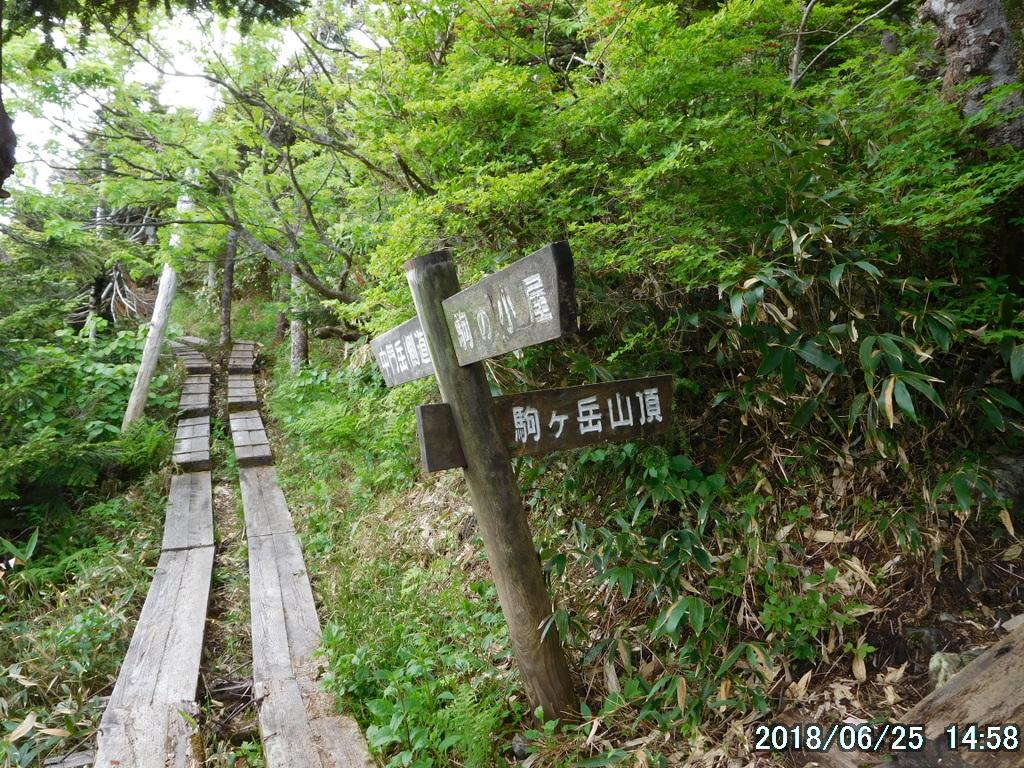 駒ノ小屋と中門岳との分岐
