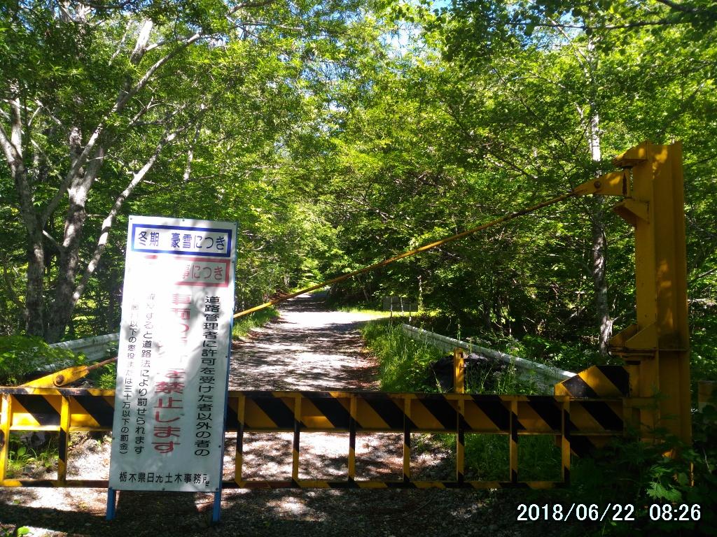 天上の楽園、田代山湿原でワタスゲを堪能してきた。
