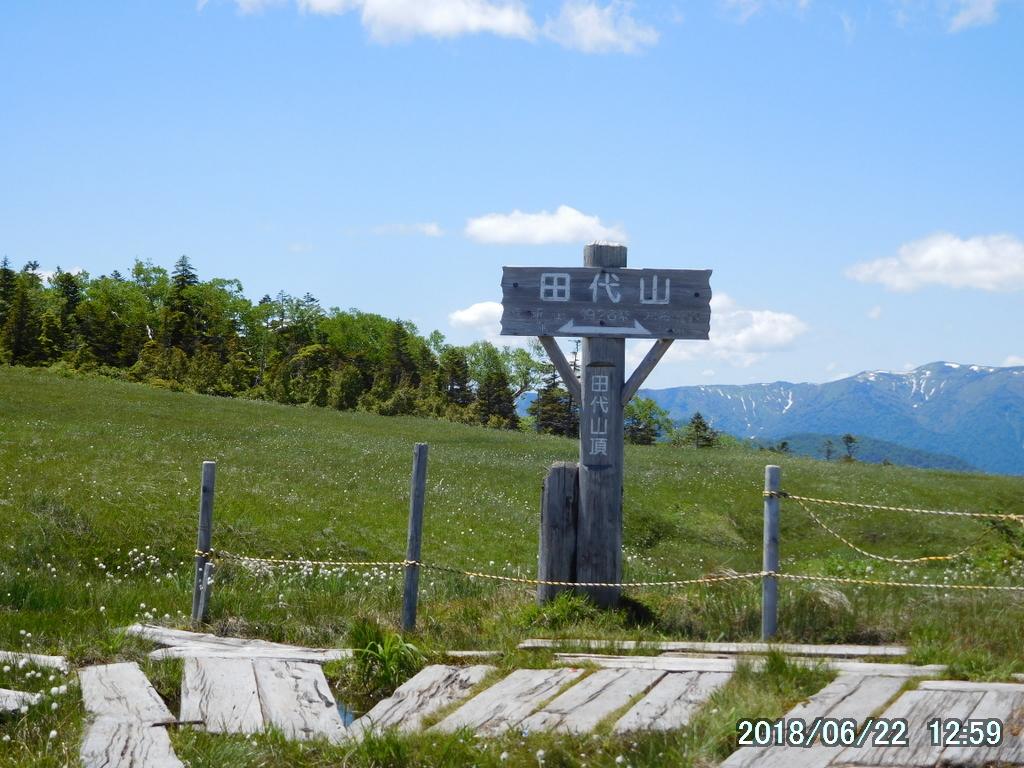 田代山山頂