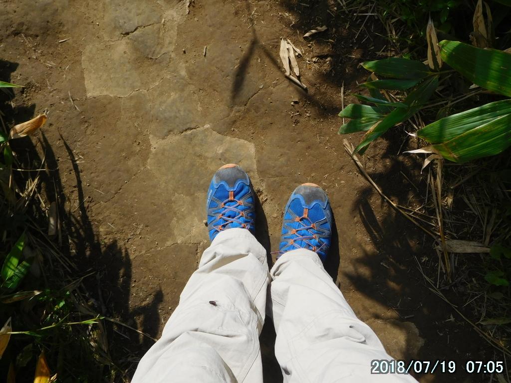 今日の靴はローカット