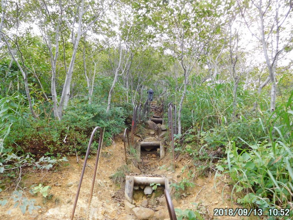 樹林帯の中の傾斜は30度近い