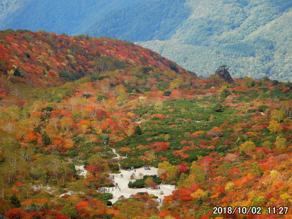 紅葉は遠くから眺めるに限る
