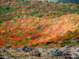 いまが旬。沼原から那須連峰をぐるりと紅葉の旅。