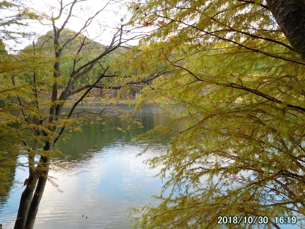 赤川ダムの畔