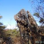 古賀志山の難ルート、中尾根で二枚岩からピーク559へ