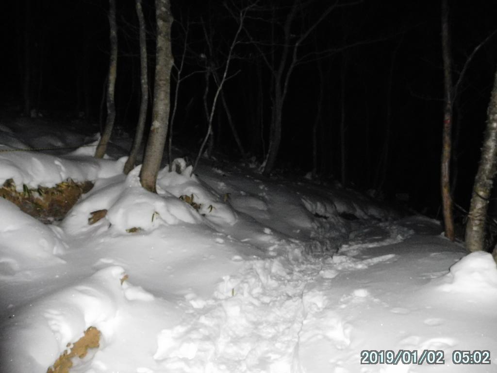 暗闇の雪景色