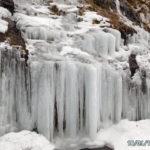 冬の雲竜渓谷散策で雲竜瀑へ。見事な氷柱群に圧倒される。