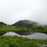 日本百名山・会津駒ヶ岳。濃霧の中、お花畑を散策。