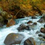 那須岳山麓の三斗小屋宿跡を目指すも増水で川を渡れず、撤退。