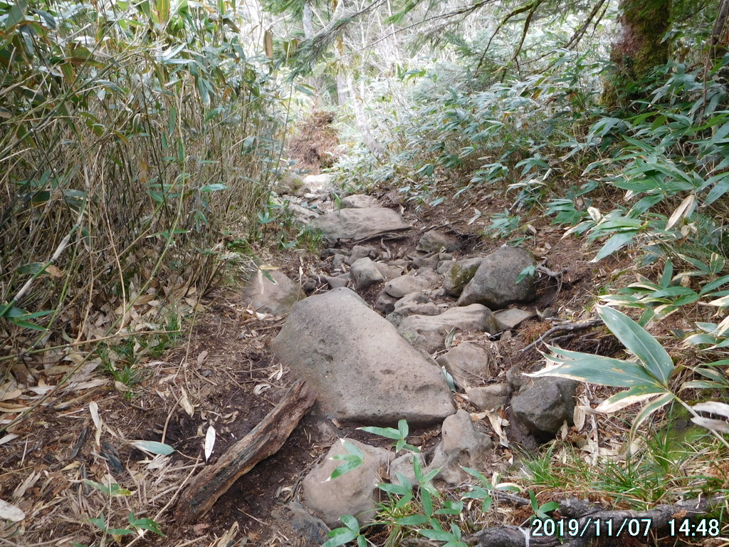 石ゴロの道