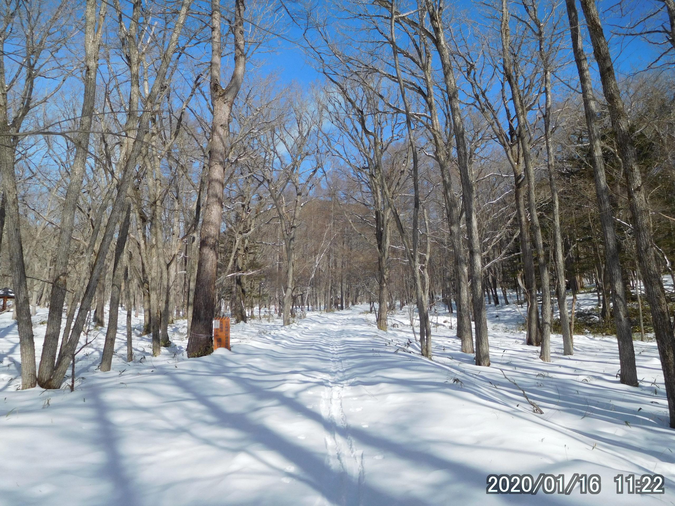 山王林道と光徳園地